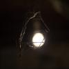 Glühbirne simple