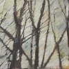 Waldstücke 1