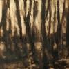 Walddurchsicht