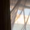 Fenstertakelage